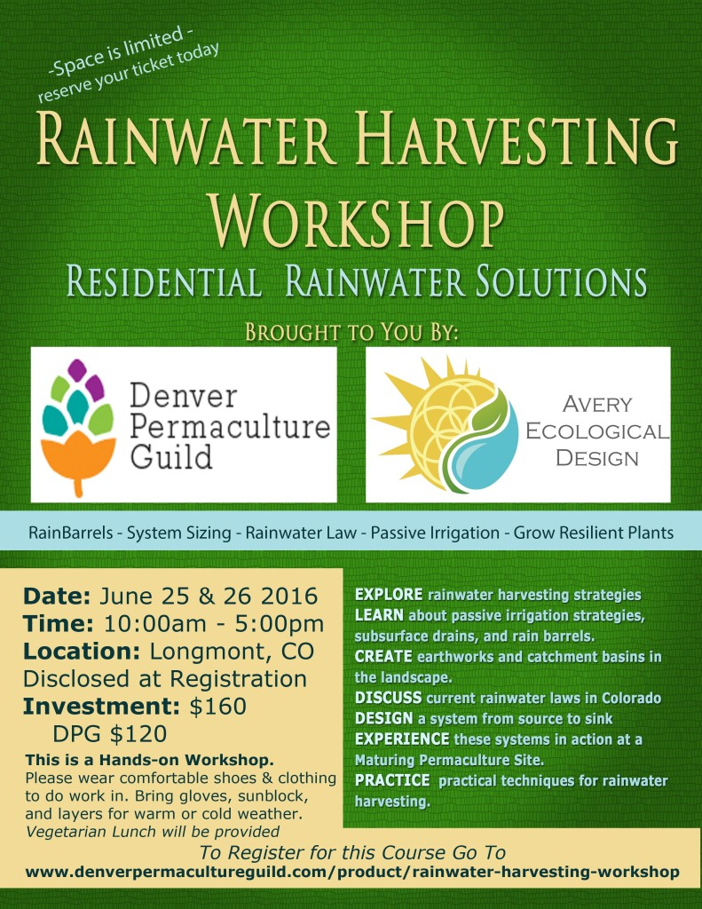 Rainwater Workshop 2016